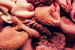Abats, viandes organiques